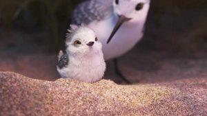 Статьи  Появились первые кадры из короткометражки «Пайпер» студии Pixar