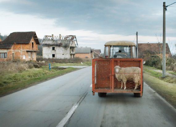 Новости  8 лучших фильмов Docudays UA покажут в 7 городах Украины