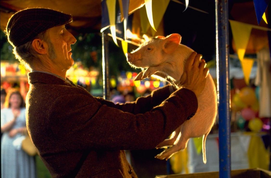 Статьи  Необычные домашние животные в кино