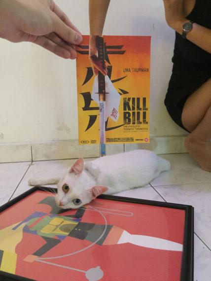 Новости  Коты и постеры из фильмов: забавные коллажи фотографа из Малайзии