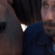 Movieclips Trailers оприлюднили трейлер фільму «Мустанг»